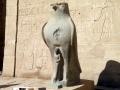 Edfu-Tempel ¦ Studienreise nach Ägypten (2009 & 2011)