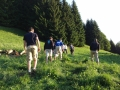 Team-Training ¦ Praktische Philosophie in der Natur